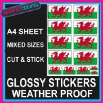A4 SIZE WALES WELSH FLAG DRAGON EMBLEM CAR BUMPER WEATHER PROOF STICKERS